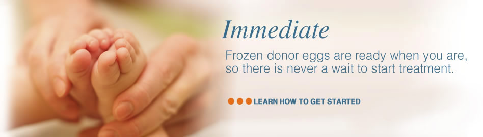 frozen_donor_eggs_are_ready